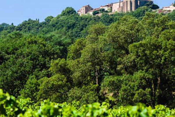 Vignes-et-Gassin